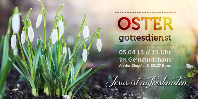 OGD_2015-2